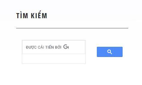 Hướng Dẫn Thêm Google Search Vào Website WordPress